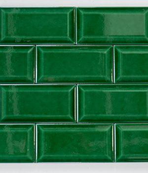 Amazon Green (2)